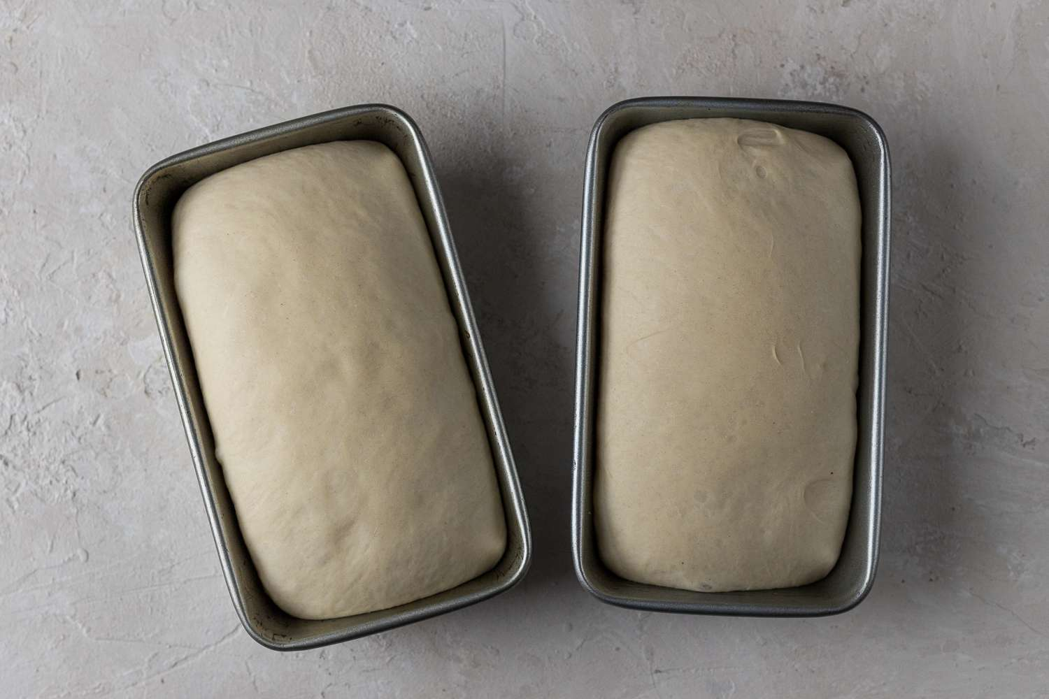 dough rising in loaf pans