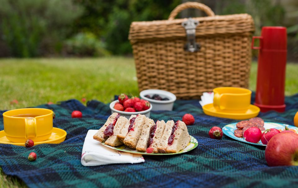 Summer picnic spread on blanket with jam sandwiches, fruit and tea