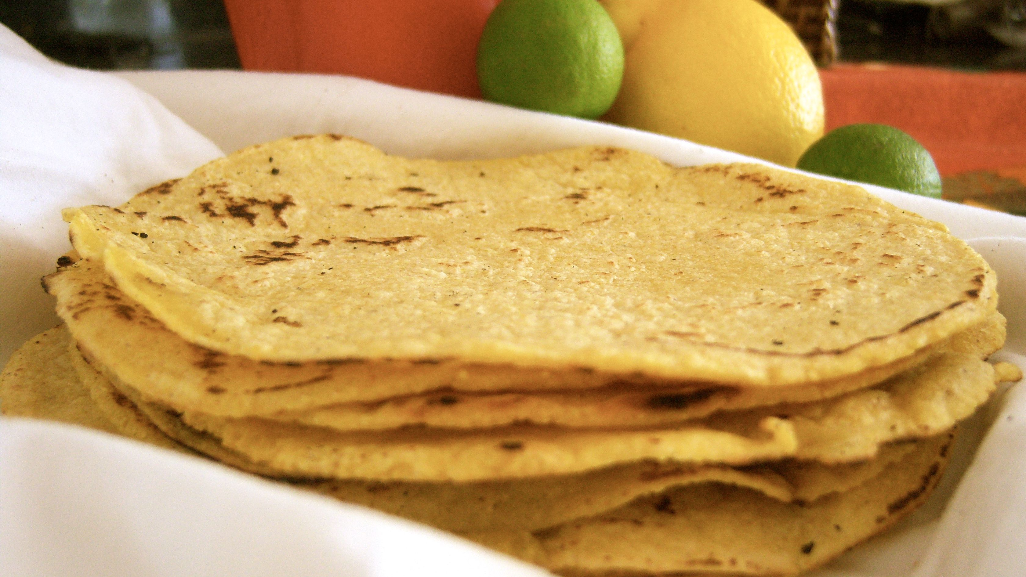 Homemade Gluten Free Corn Tortilla Recipe