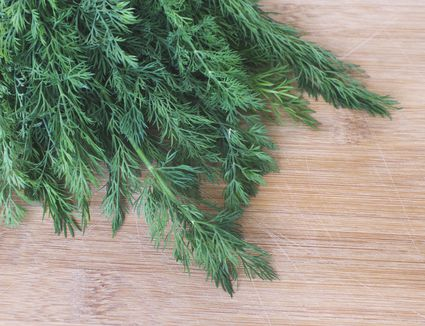 Fresh organic dill on new wood surface