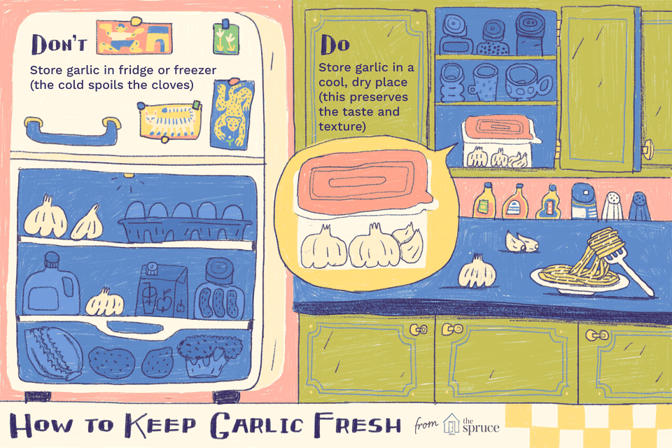 illustration showing how to keep garlic fresh