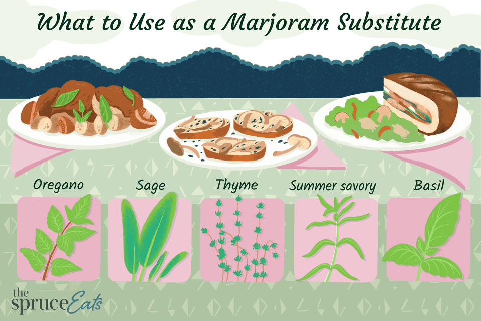 Marjoram Substitutes