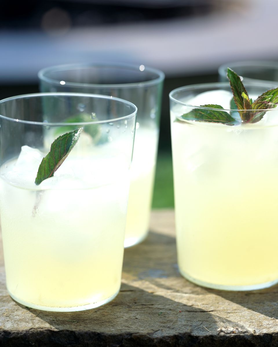 Glasses of lemonade with mint sprigs