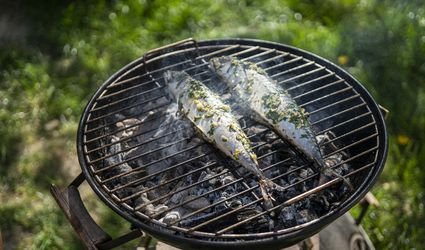 mackerel on a grill outdoors