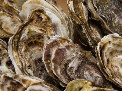 Charbroiled Oysters Like Drago's in New Orleans