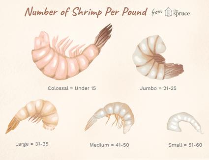 number of shrimp per pound illustration