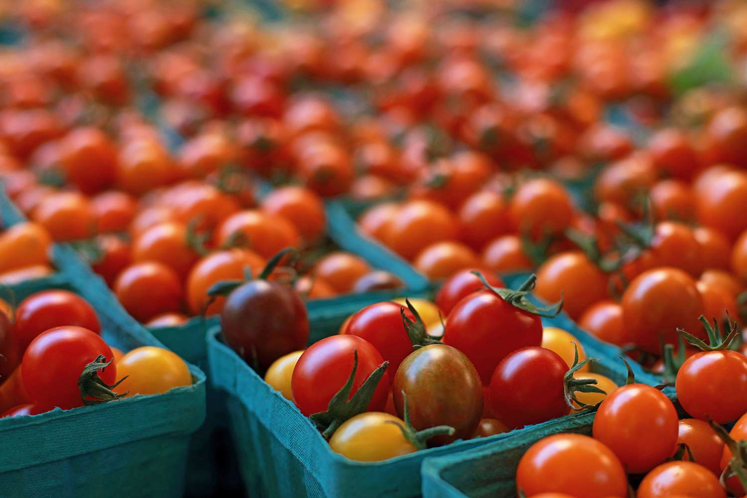 A photograph of Cherry Tomatoes displayed at a farmers market for sale.