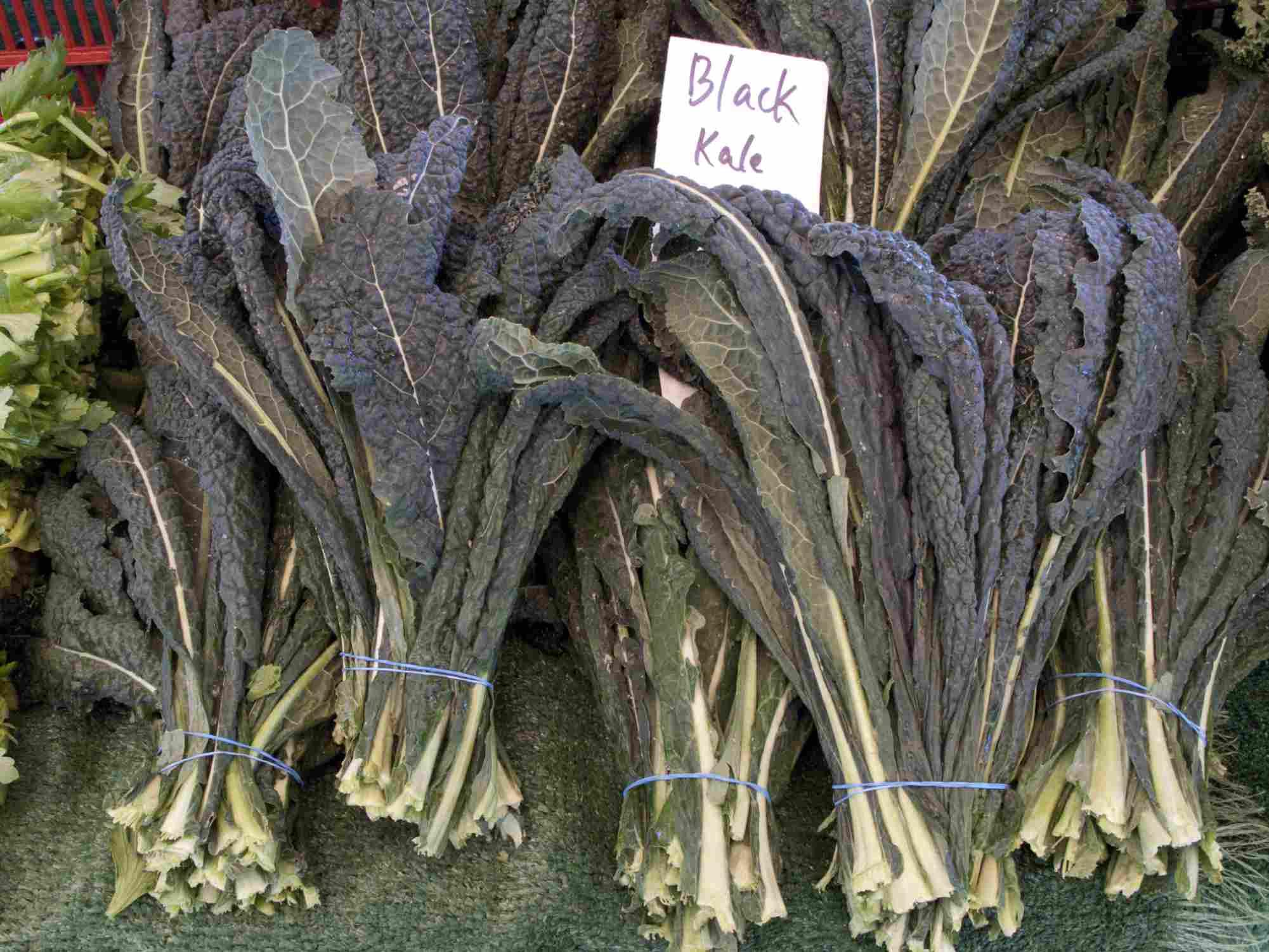 Lacinato Kale (Dino Kale)