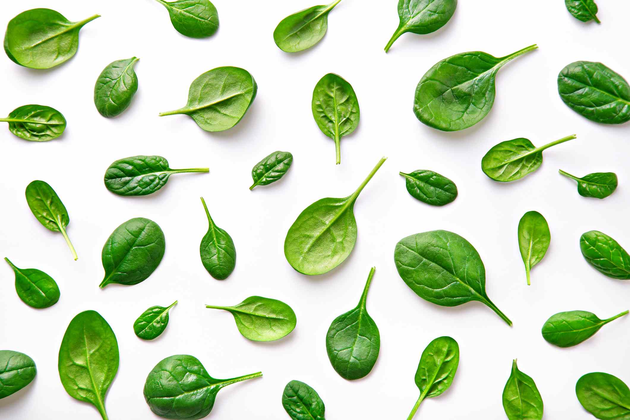 spinach scattered on a white background