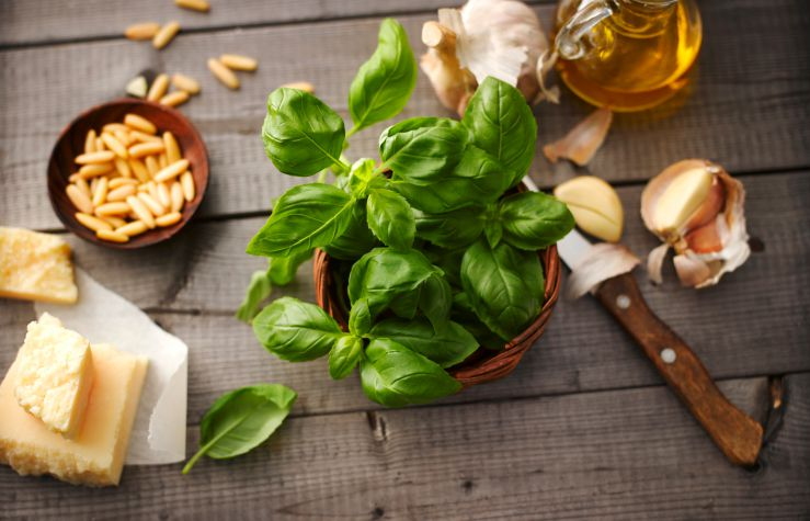 Learn How to Make Fresh and Simple Summer Pesto