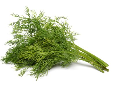 What Is Dill and How Is It Used?