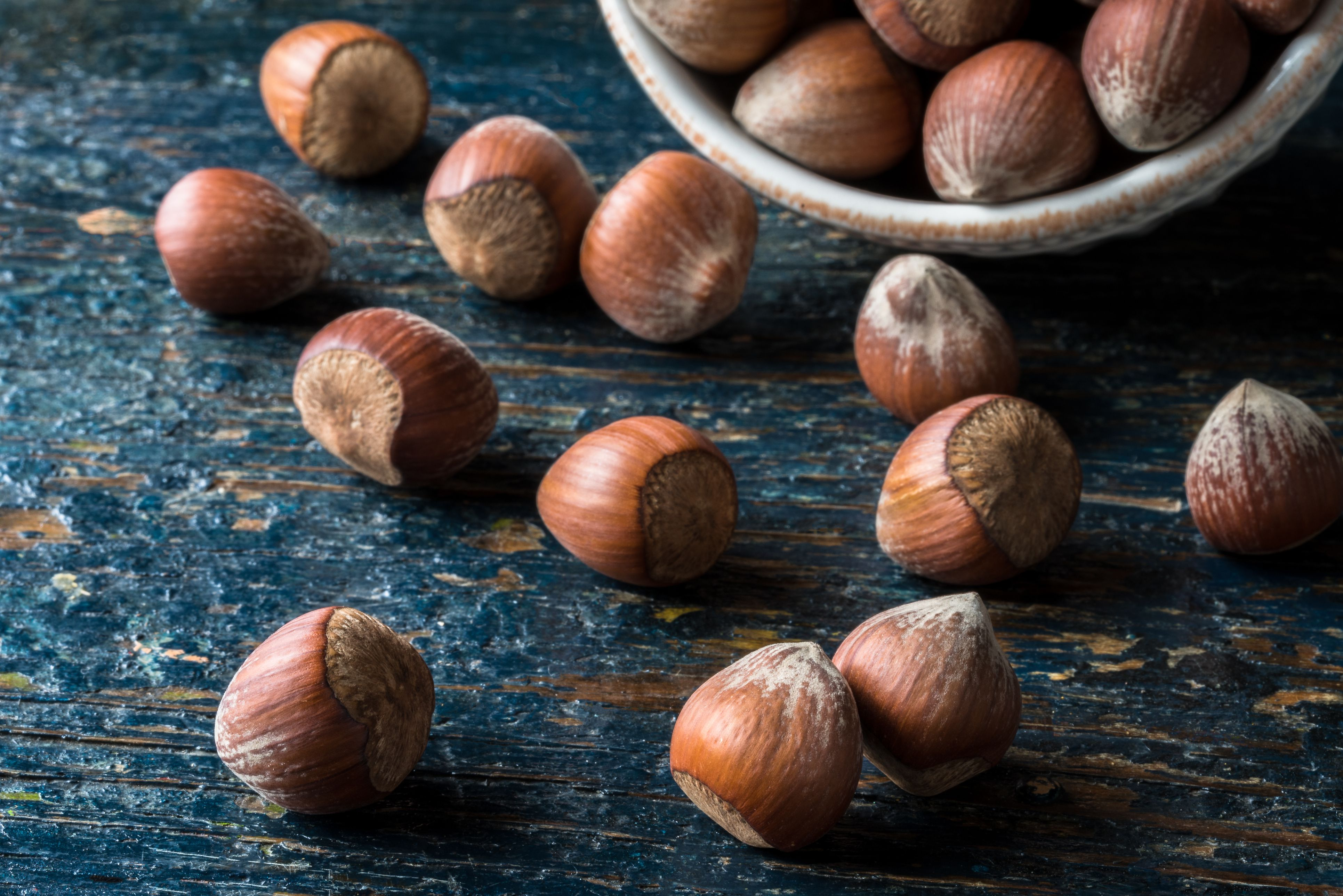 Learn About Hazelnuts Haselnuesse in German Cooking
