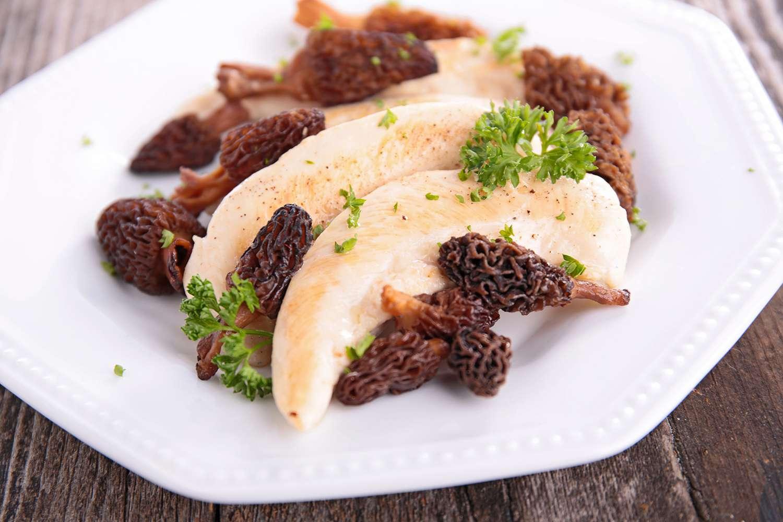 chicken fillet and morel
