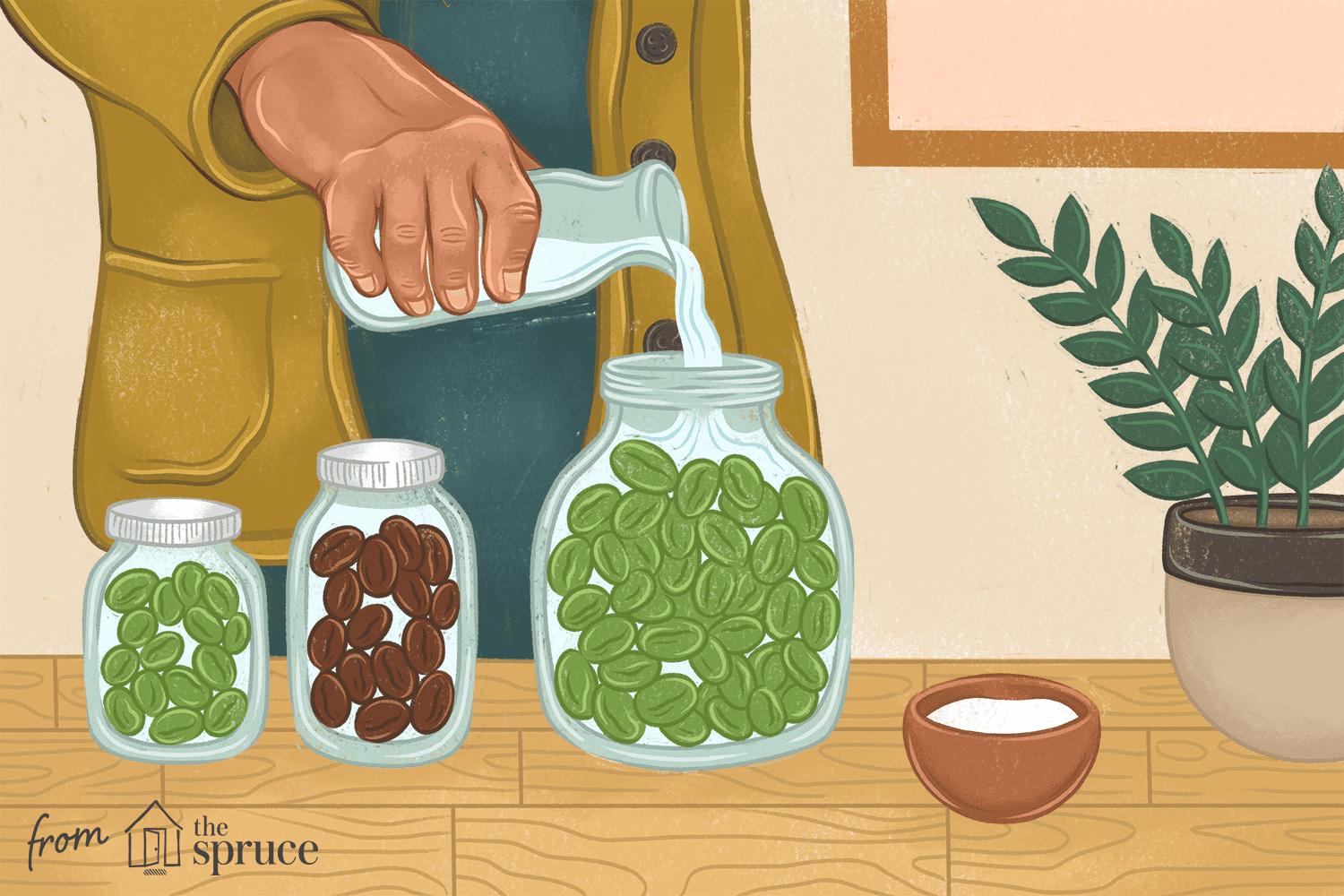 illustration of how to cure olives