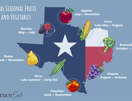 illustration showing seasonal fruits and vegetables of texas