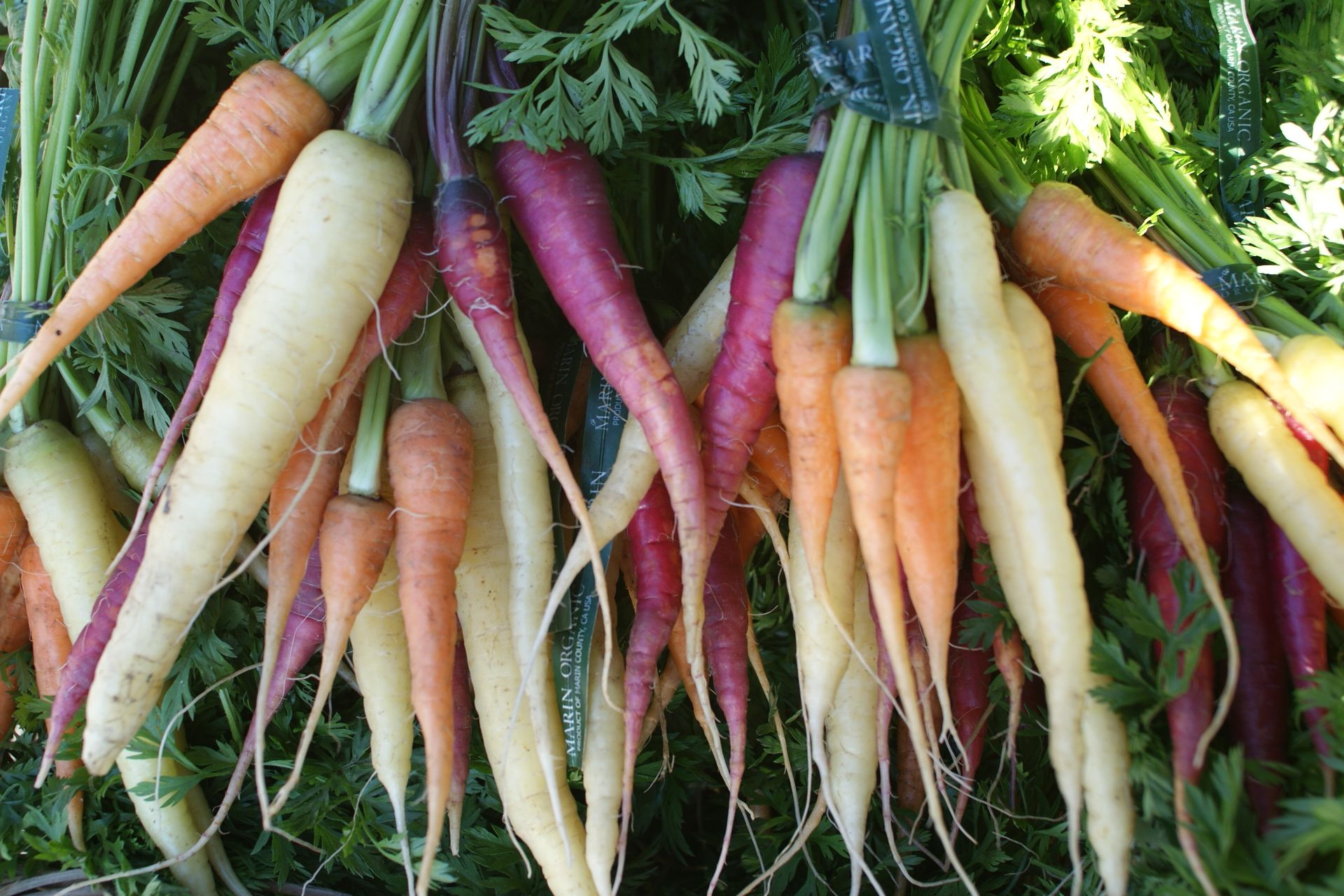 Nebraska Seasonal Fruits And Vegetables