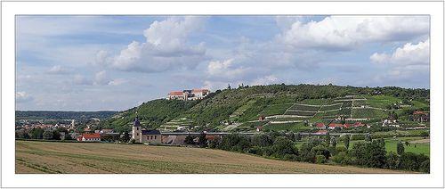 Neuenburg und Weinhaenge, Freyburg (Unstrut)