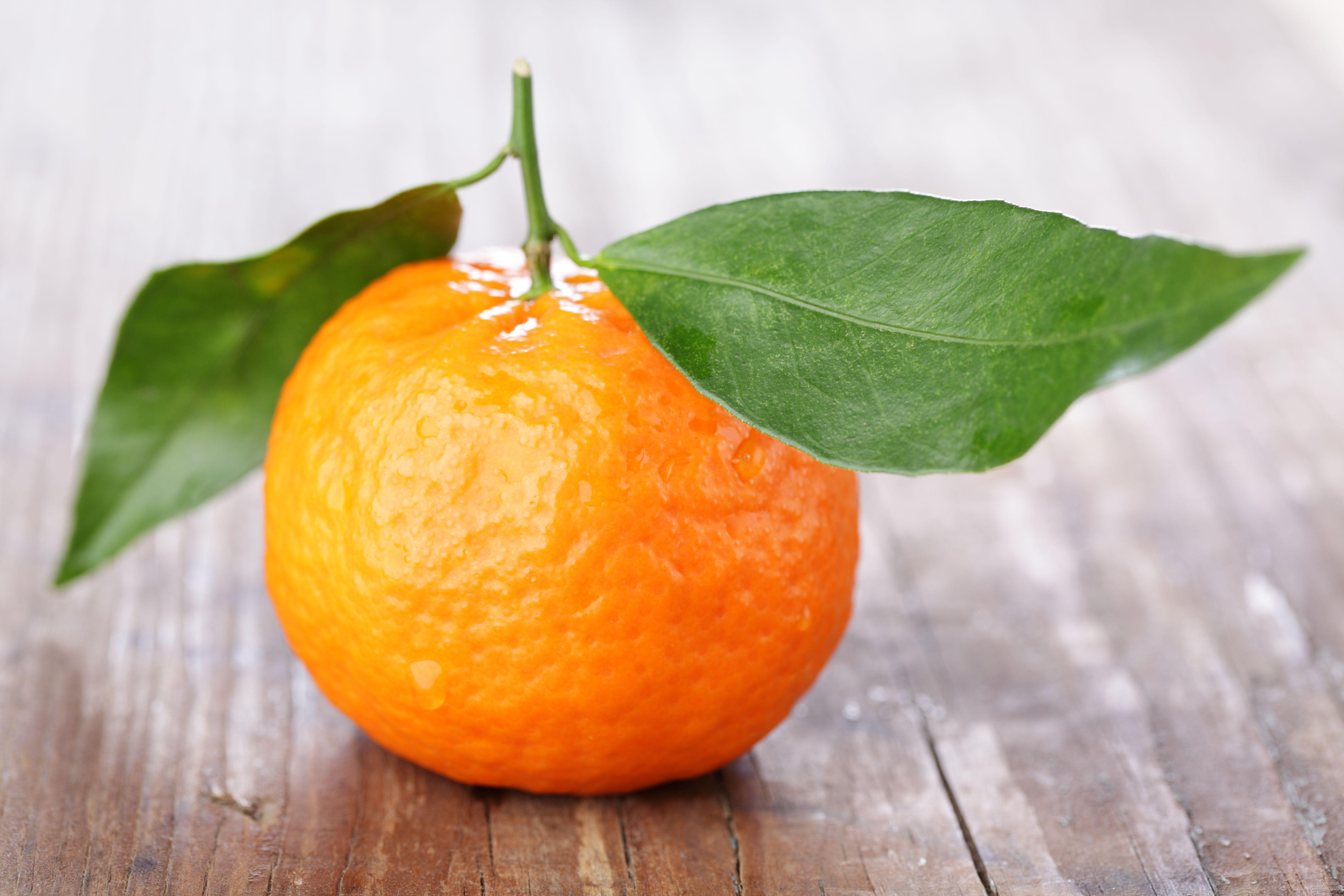 Mandarin orange with leaves