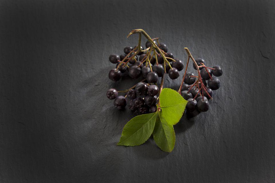 Aronia berries or chokeberries