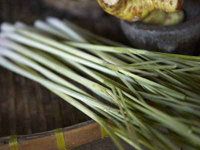 What Is Lemongrass and How Is It Used?