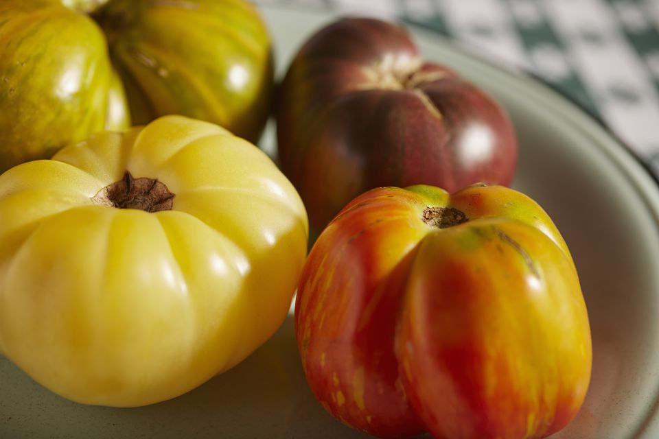 ripe multicolored heirloom tomatoes