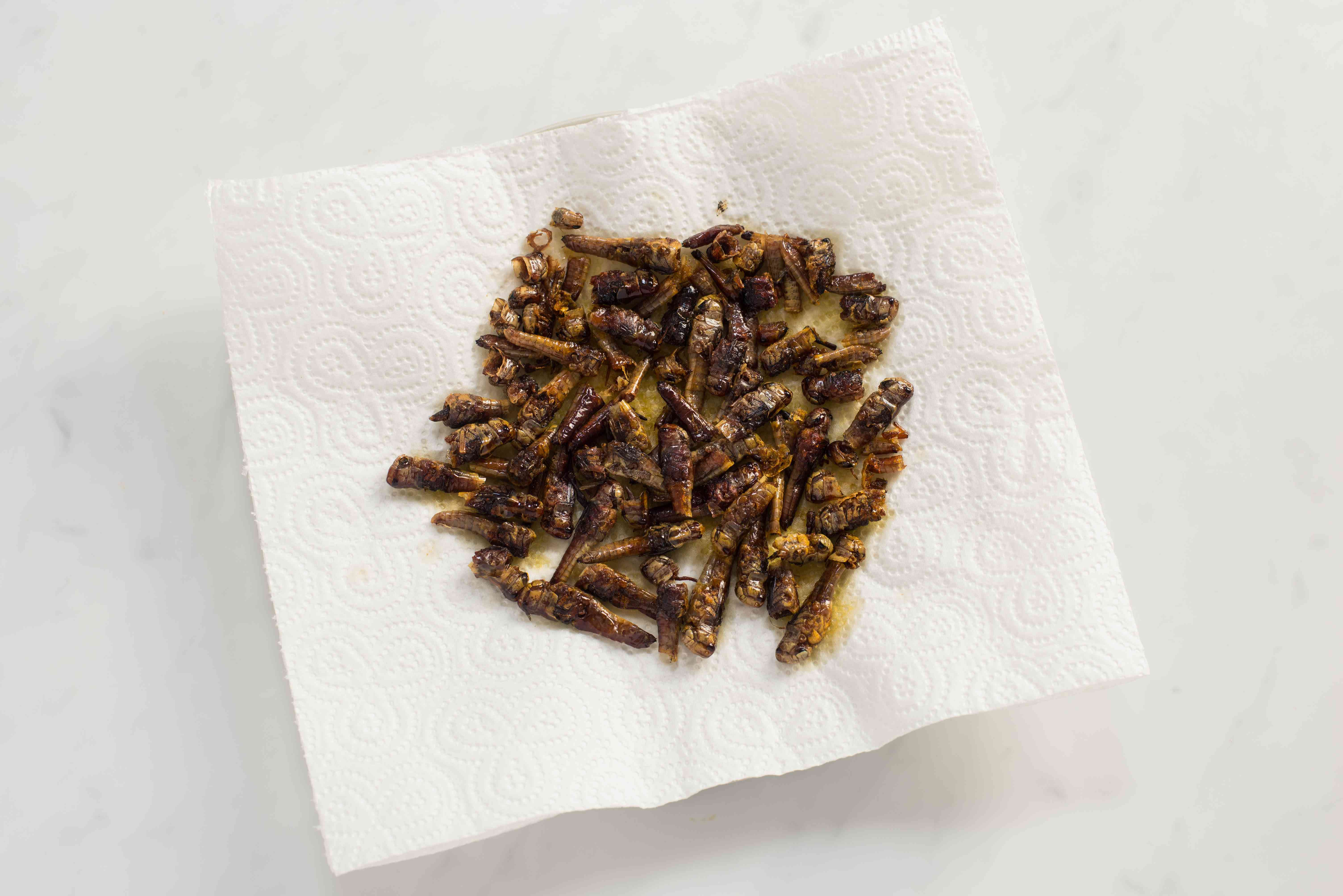 Chapulines draining on paper towels