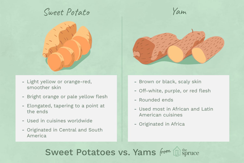 Jangan Sampai Keliru, Ini 6 Perbedaan Taro Dan Ubi Ungu