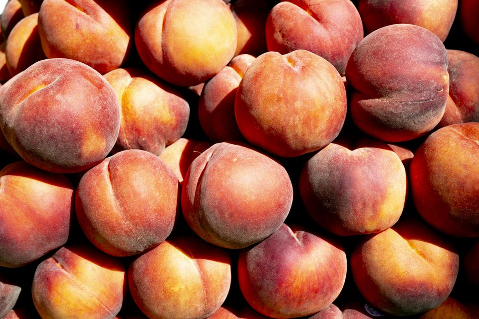 Fresh Georgia peaches