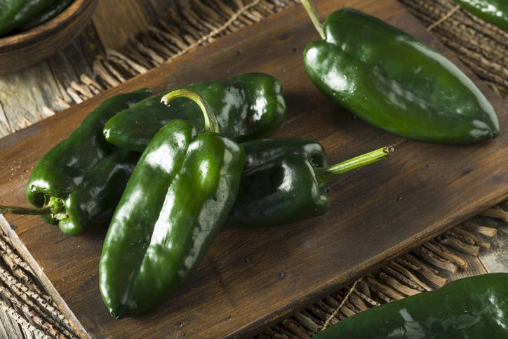 Raw organic poblano peppers