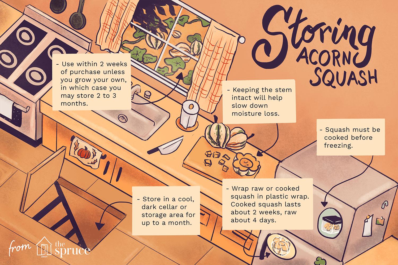 tips for storing acorn squash