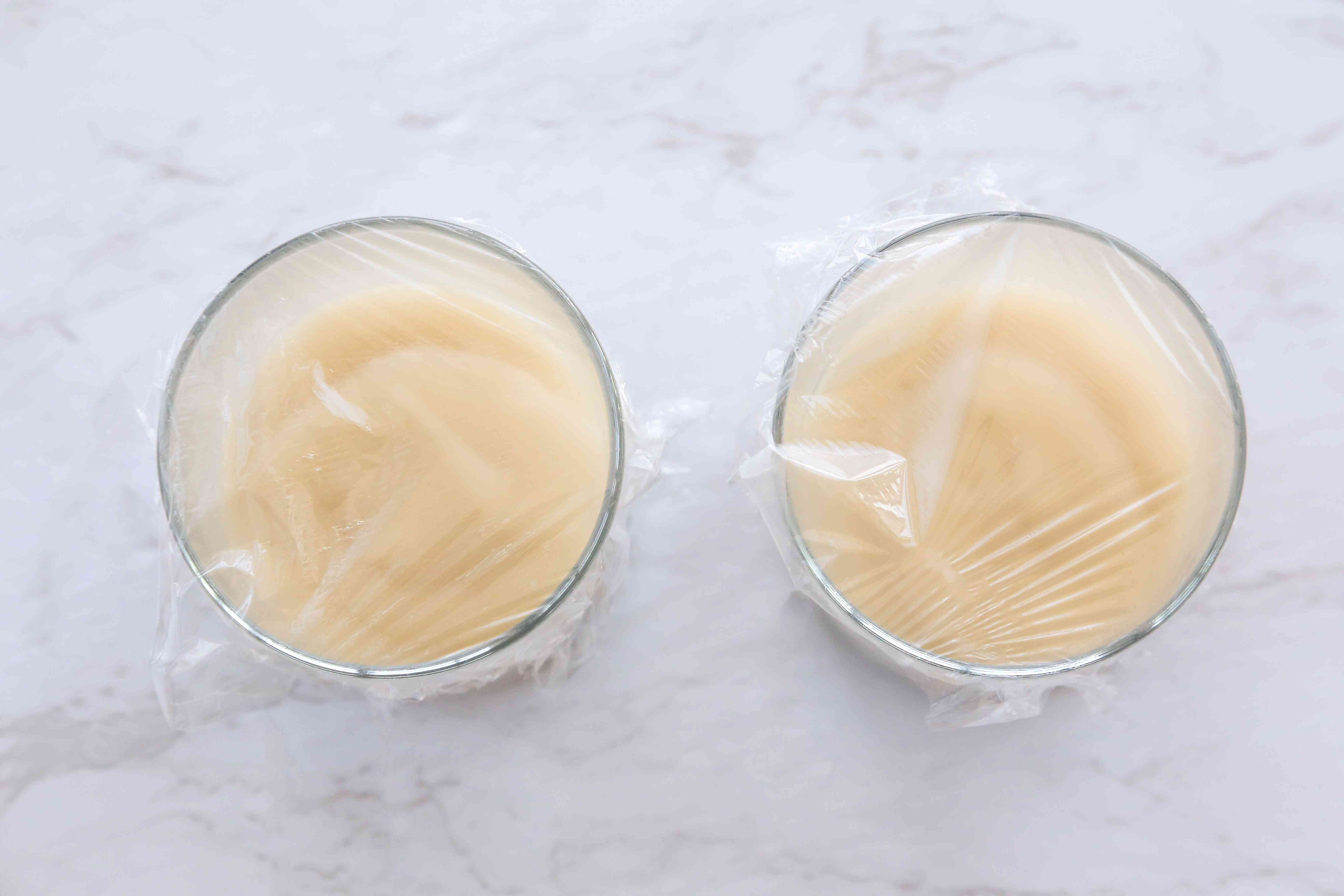 cover the cups with pudding with plastic wrap