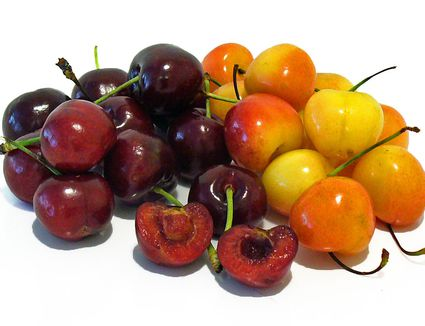 cherries cherry recipes bing rainier fruit receipts
