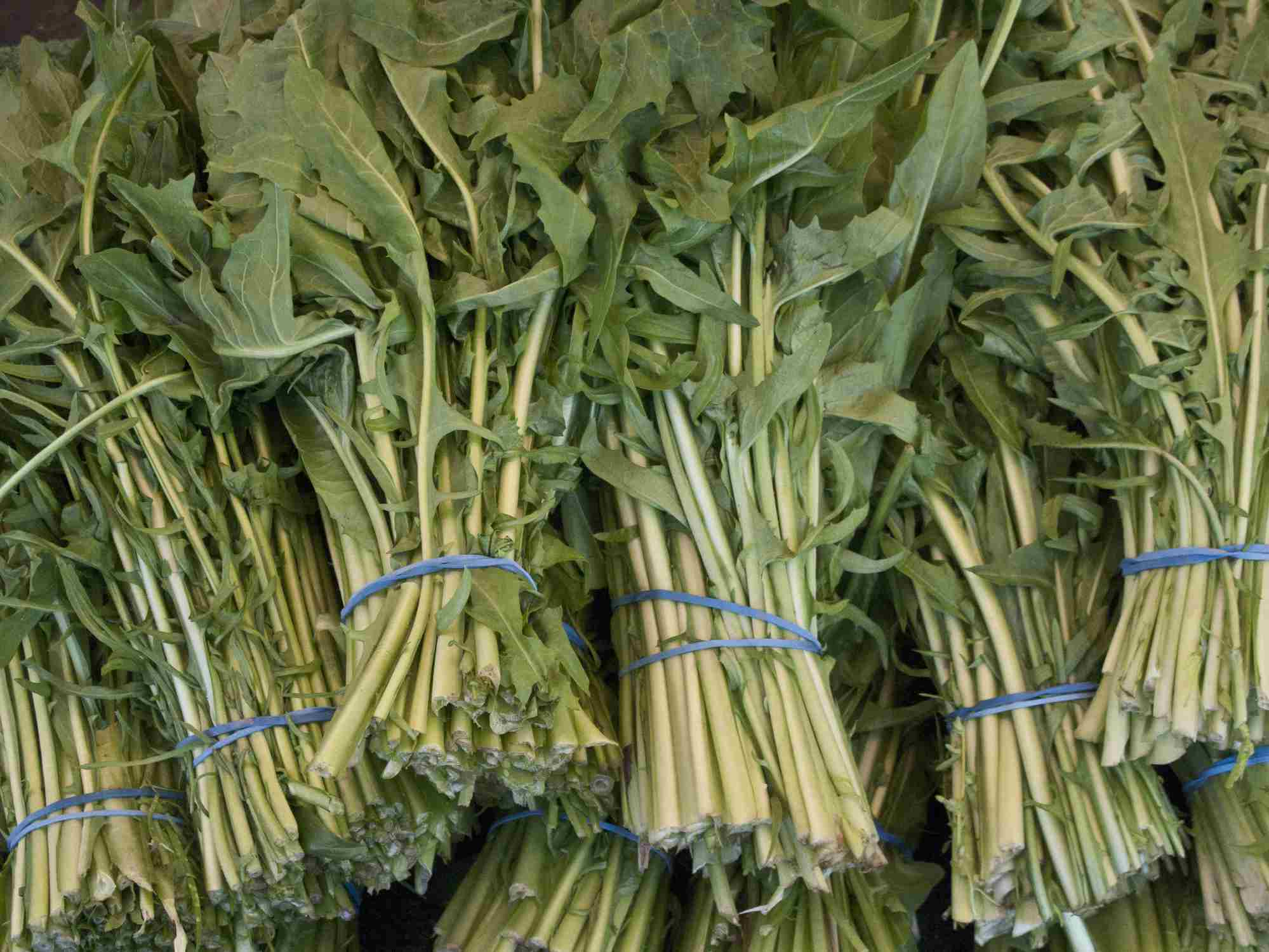 Bunches of Dandelion at Farmers Market