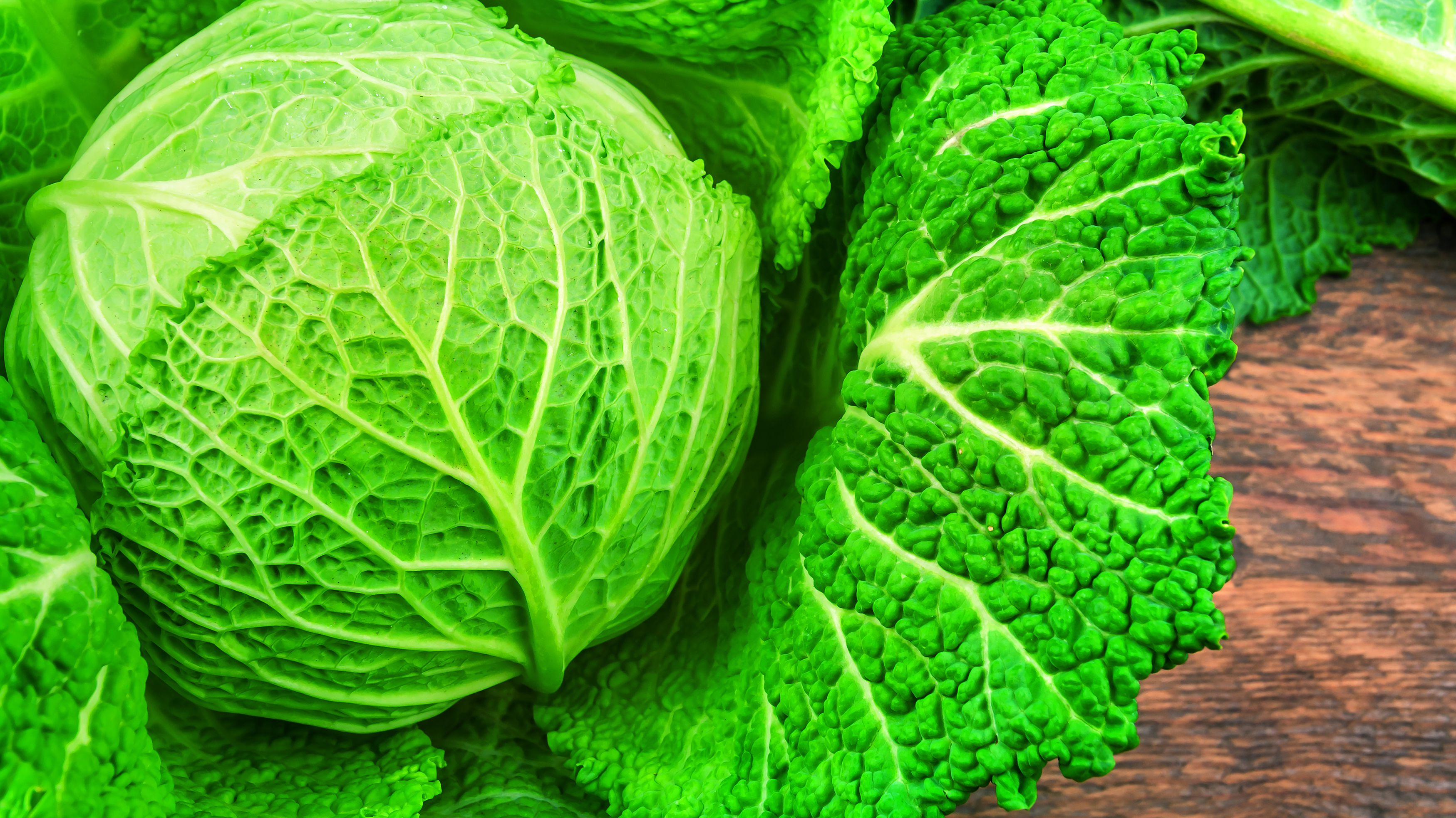 All About Cabbage With Winning Recipes