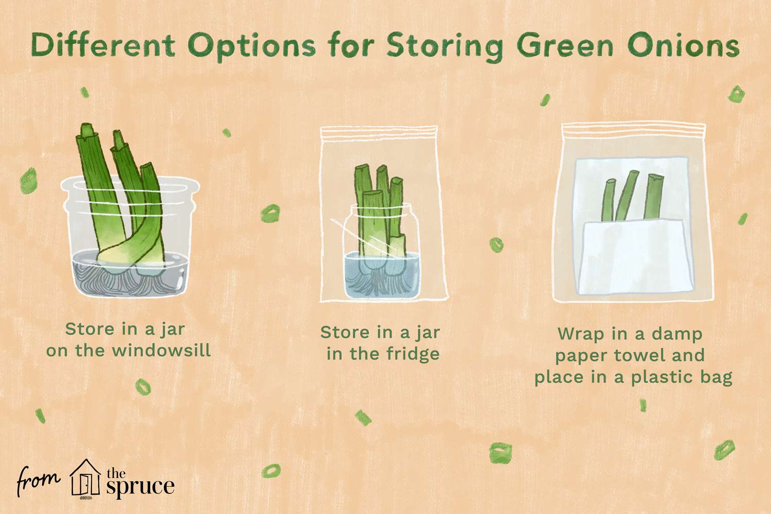 illustration showing how to store green onions