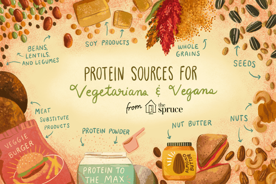 illustration showing protein sources for vegetarians and vegans