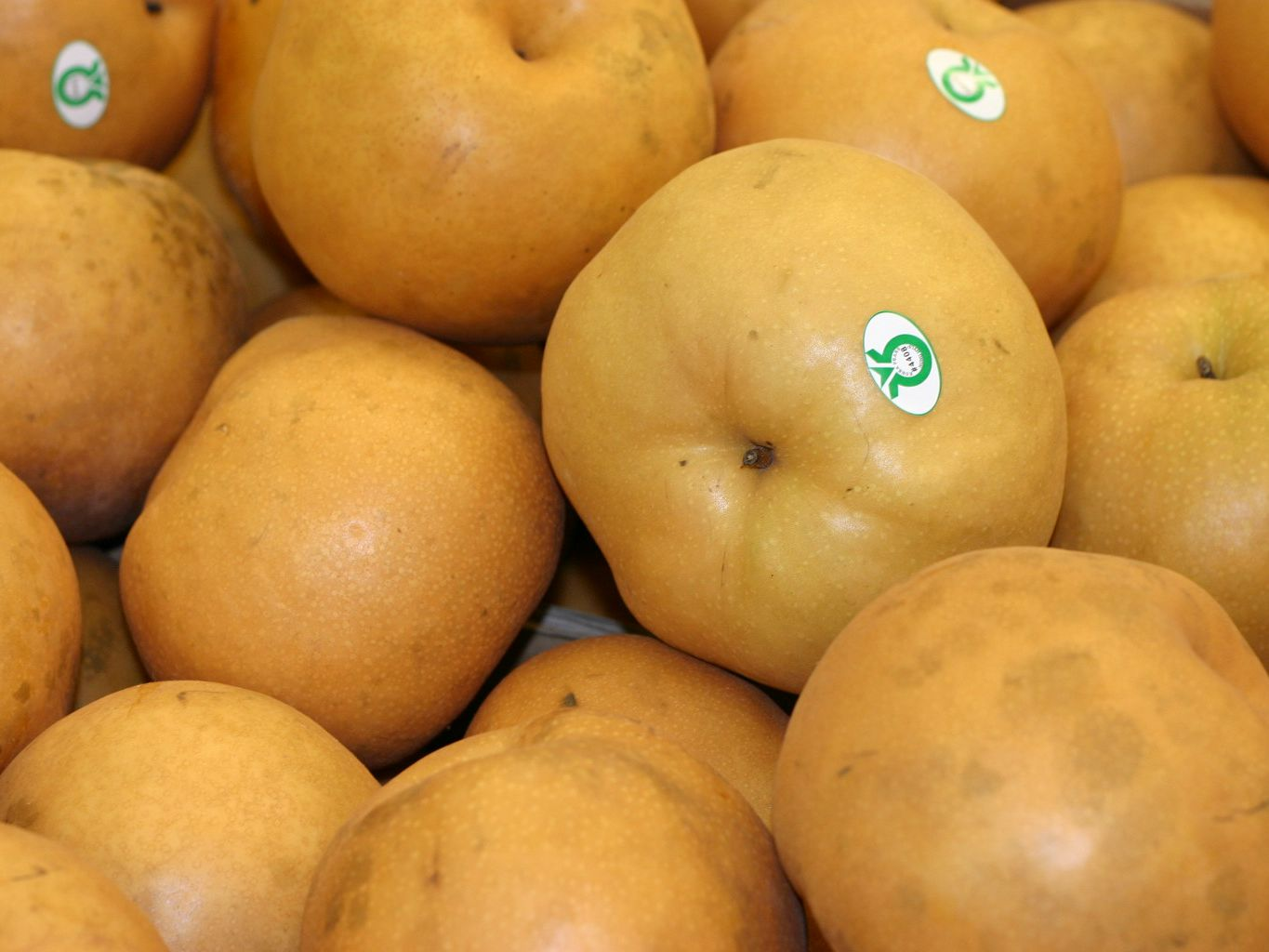 What You Should Know About The Bae Pear