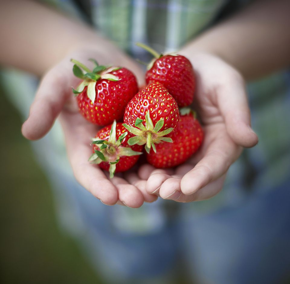 Strawberries in hands