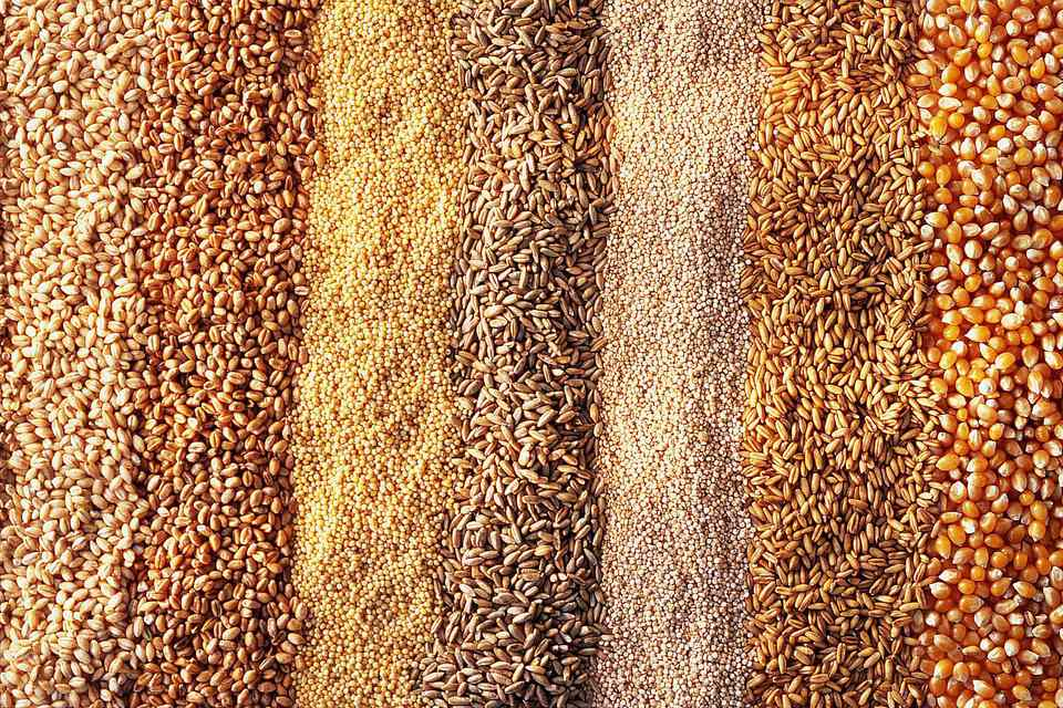 Various Grains