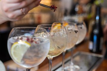 The 9 Best Gins of 2020