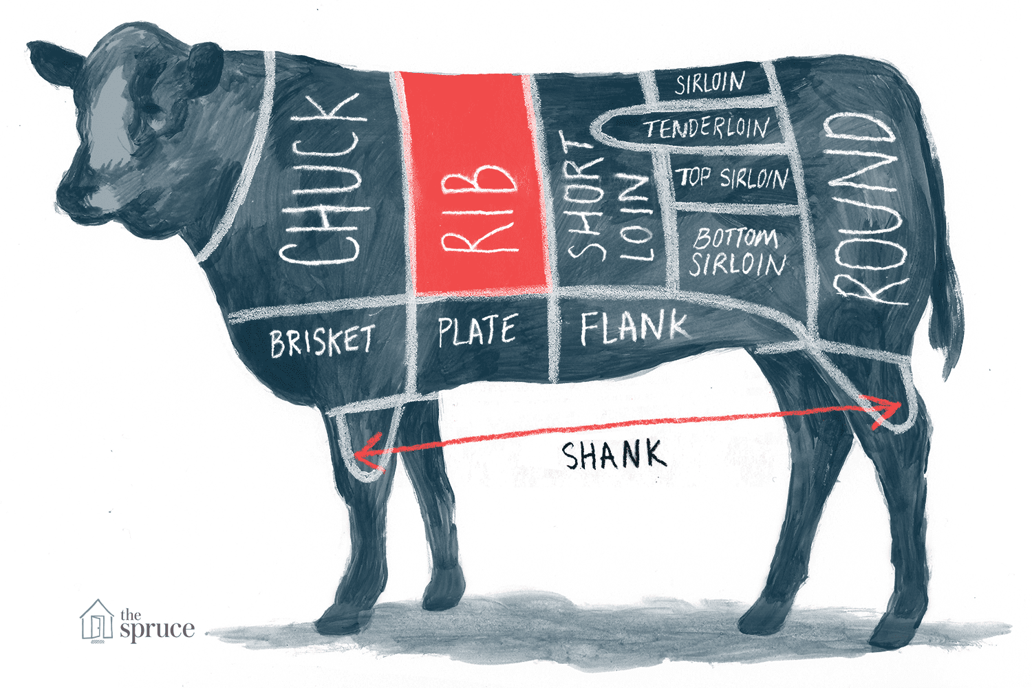 Annotated chart of rib beef cut