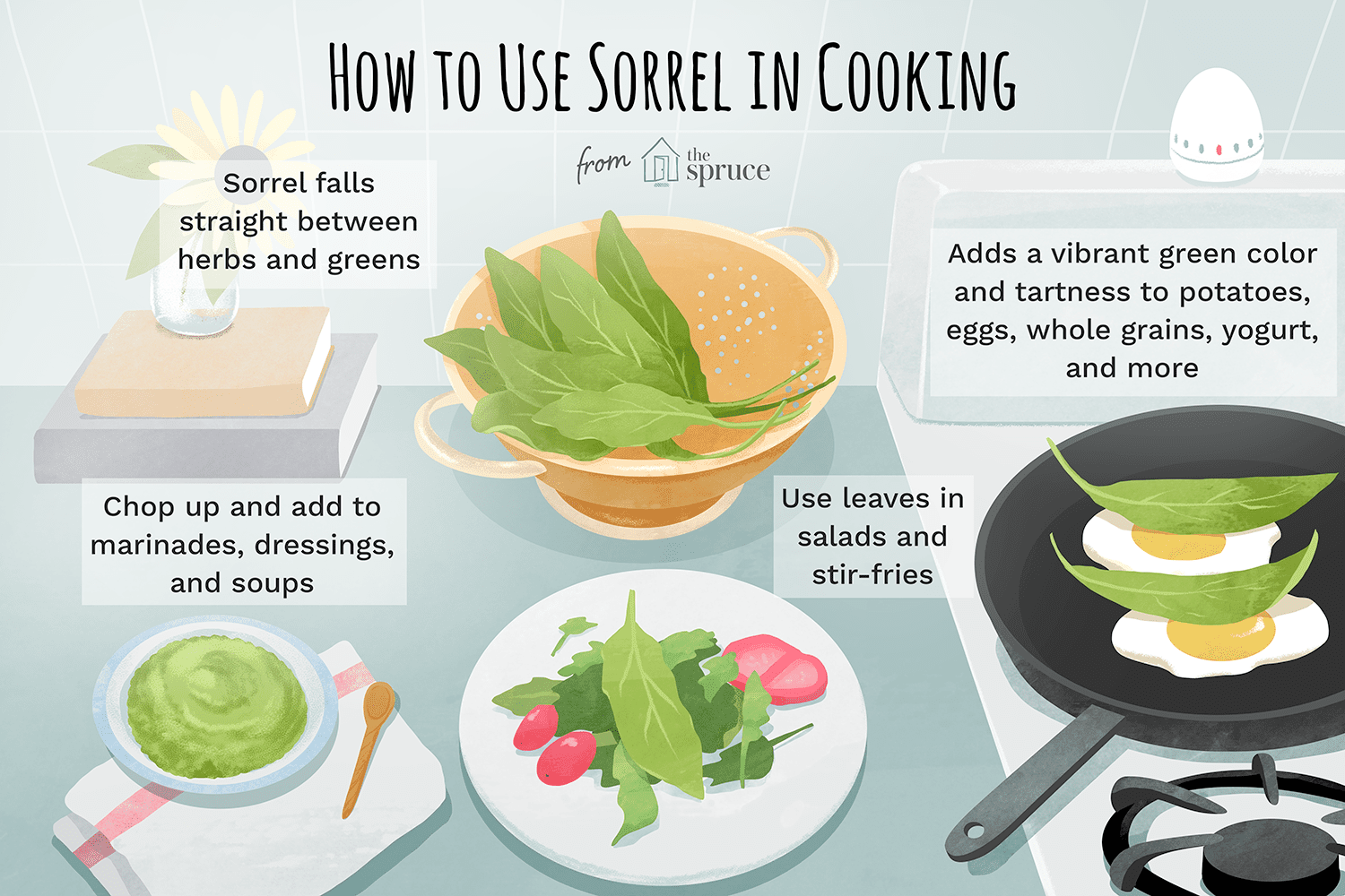 how to use sorrel