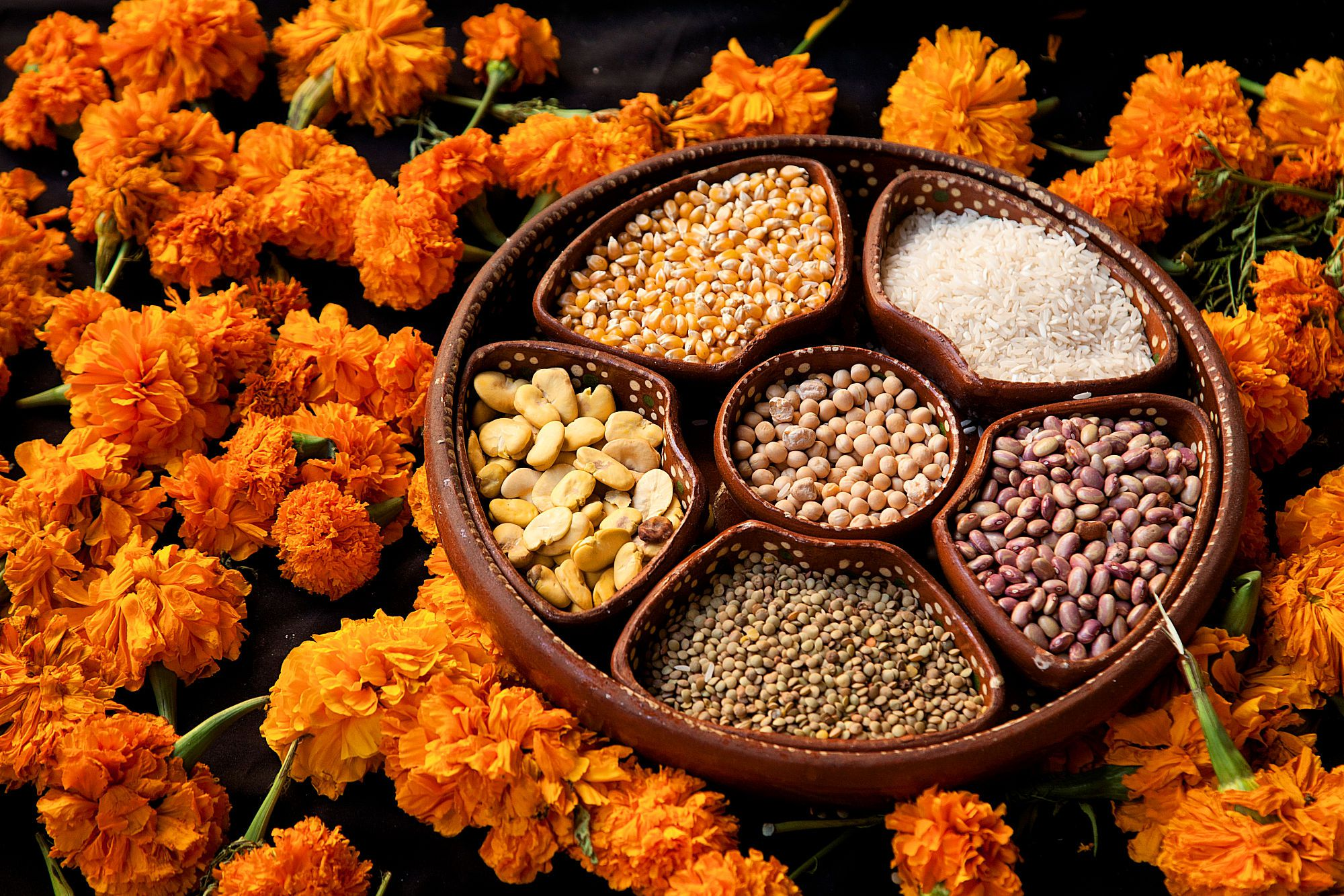Day of the Dead Grains