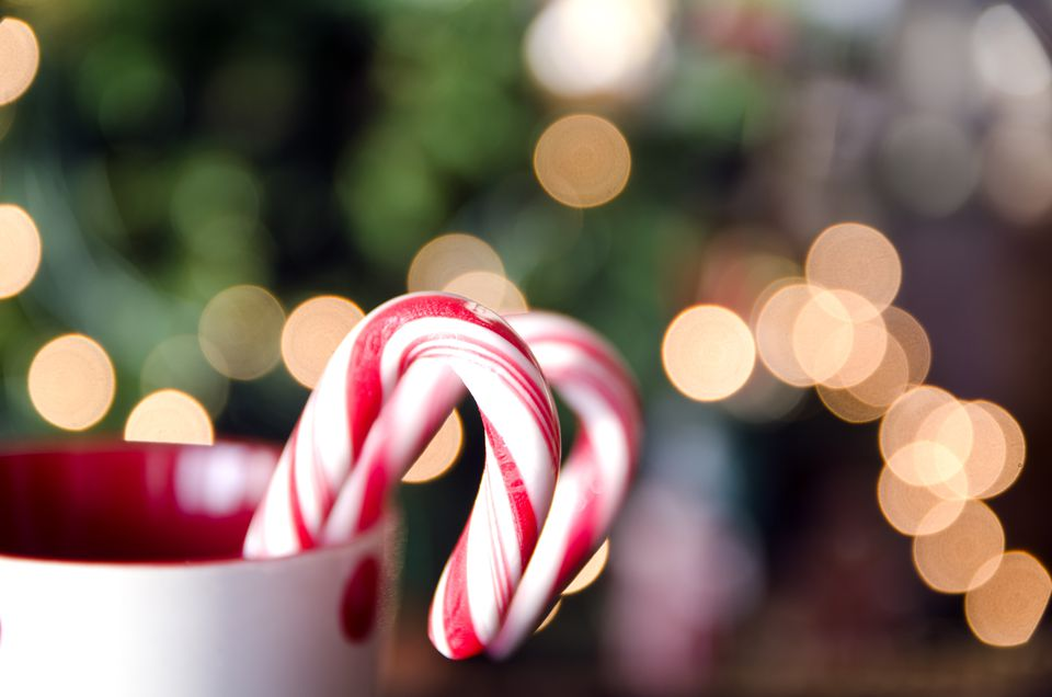 Candy canes and christmas lights
