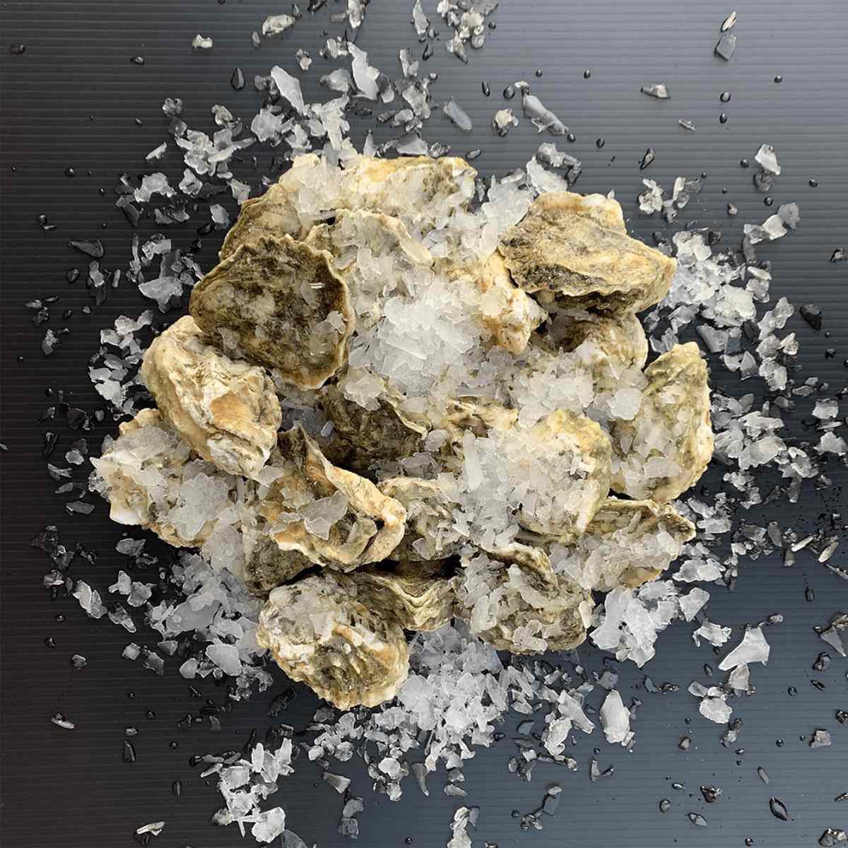 pike-place-fish-market-kumamoto-oysters