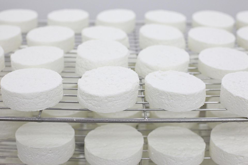 Goats cheese on maturing rack