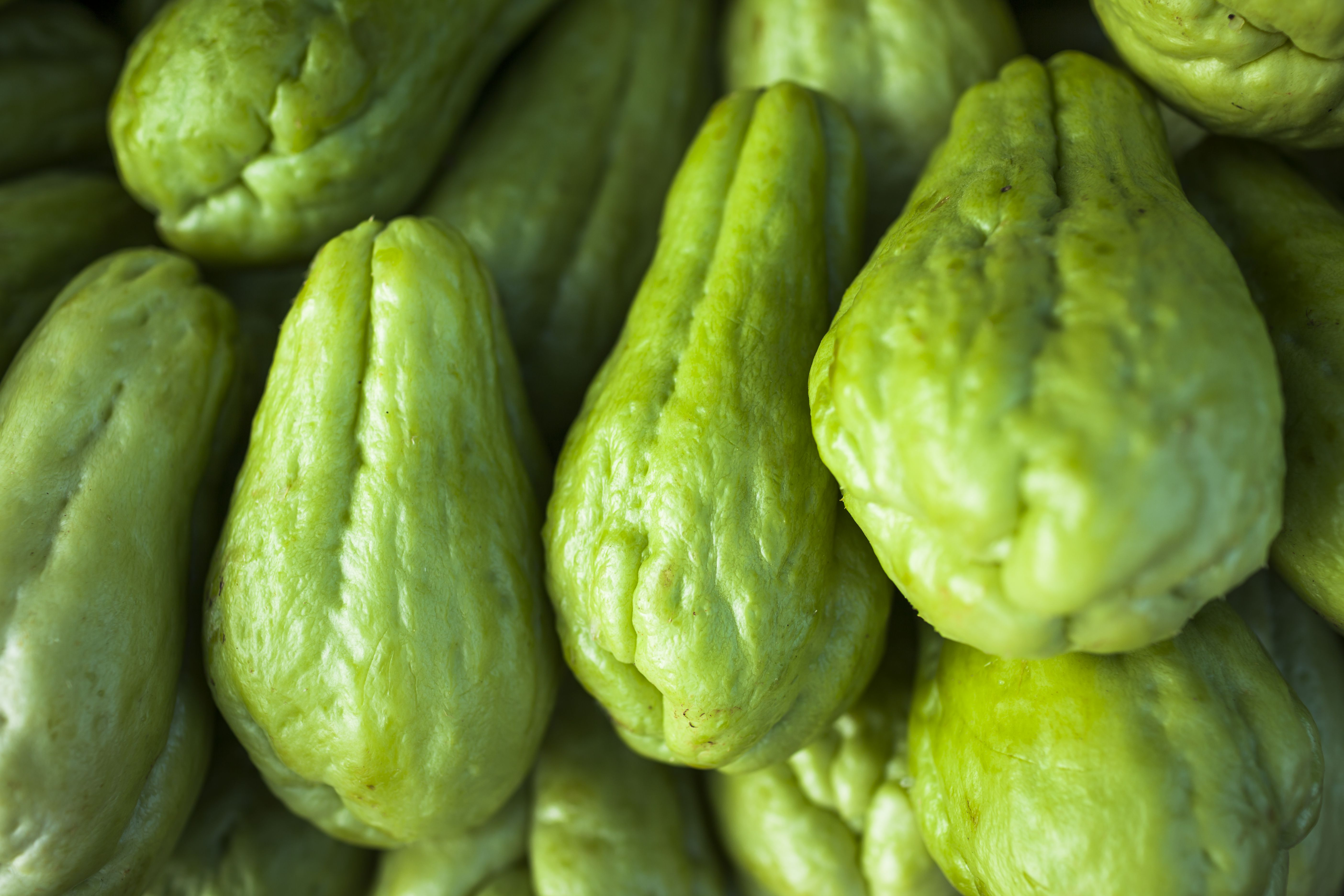 Chayote squash for sale at the produce market