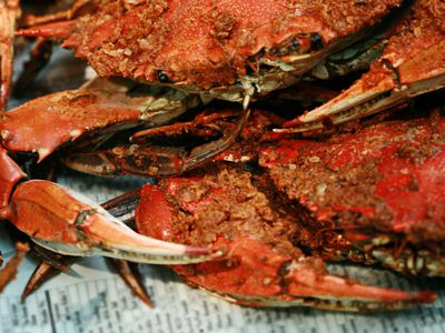 How to Cook and Select Dungeness Crab