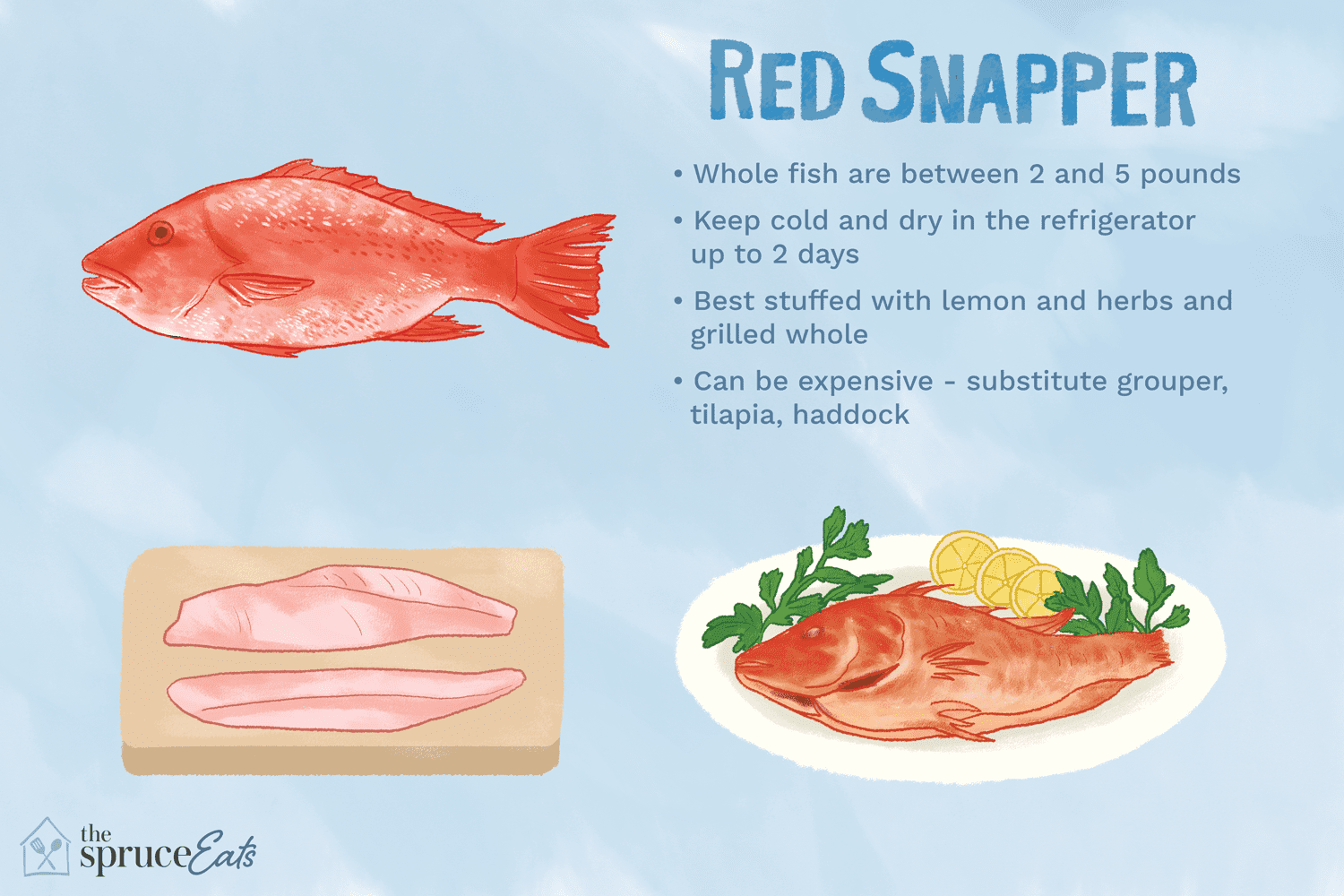 what is red snapper