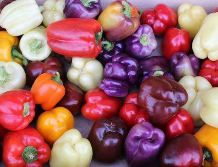 étal de poivrons dans un marché à Trouville (pepper stall in a market in Trouville)